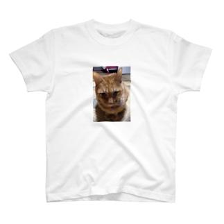 リロ T-shirts