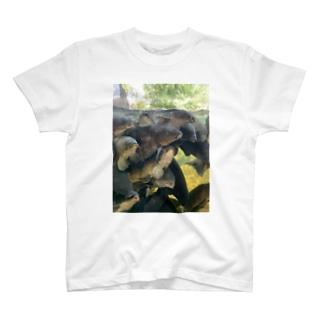 蜜コイ T-shirts