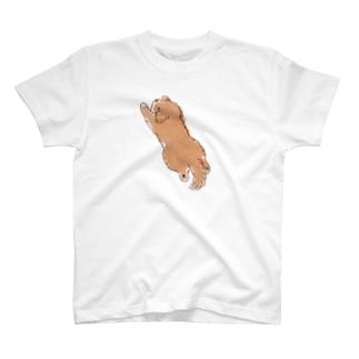 こぐま犬スーパーマンのポーズ T-shirts