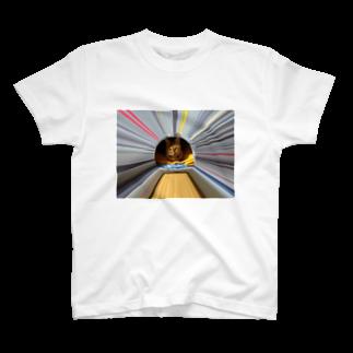 リロさんグッズのSHOPのリロ T-shirts