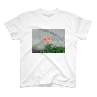 Poppies T-shirts