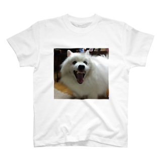 #本日のいぬ T-shirts