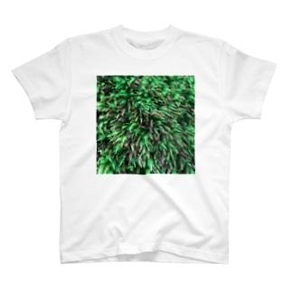 店ショップのモスモス T-shirts