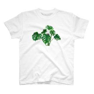 桜文鳥とモンステラ T-shirts