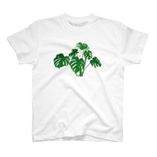 白文鳥とモンステラ T-shirts
