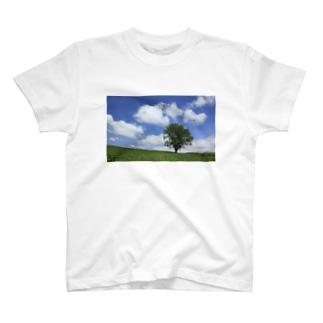 ミシンベアの夏空と木 T-shirts