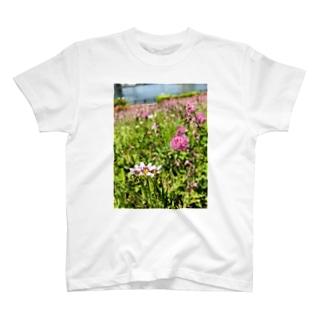野原 T-shirts