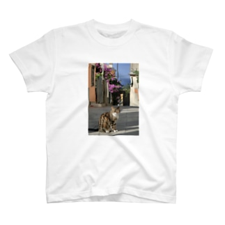 イタリアの空と猫 T-shirts