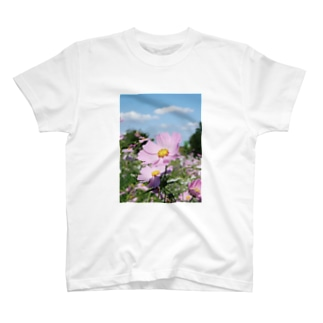ピンクのコスモス T-shirts