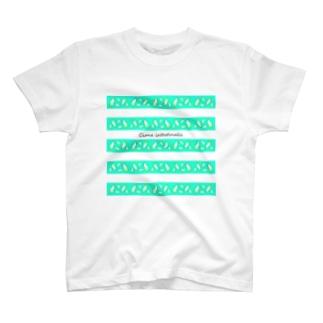 Ciona工房(生き物雑貨)のカタユウレイボヤ(ミント・ボーダー) T-Shirt