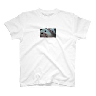 どんぐりくん♪ T-shirts