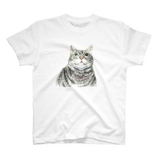 karin T-shirts
