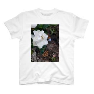 クチナシ   T-shirts