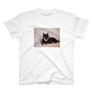 黒柴のまる T-shirts