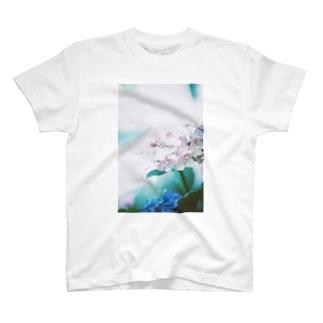 【花途夢】紫陽花 ph data./2020.6.17 T-shirts