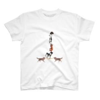 ねこ倒立 T-shirts