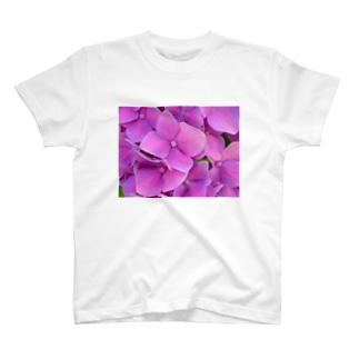 紫陽花。 T-shirts