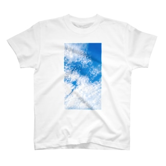 Scale cloud. T-shirts