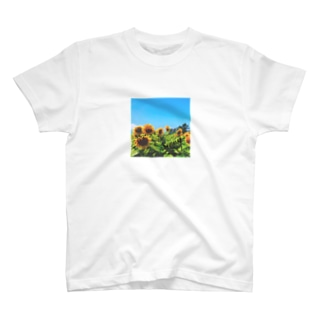 Sunny's with sunflowers T-shirts