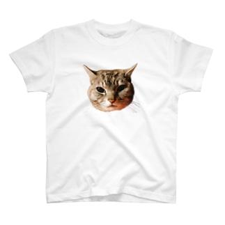 げんきもりもりのぽろにゃん猫のシュラ T-shirts
