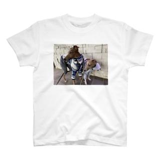 イタグレの冬 T-Shirt