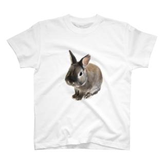 幸運うさぎ小六公 T-shirts