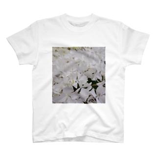 紫陽花(白) T-shirts