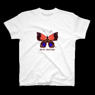 なで肩うさぎの美香堂のファルキドンミイロタテハ T-shirts