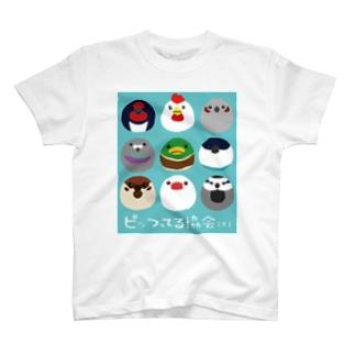 ピッつってる協会 公式T(ボ) T-shirts