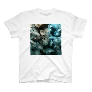 クラゲだらけ-白黒 T-shirts
