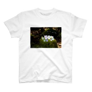 おとも〜もりまつり〜 T-shirts