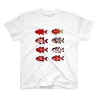 まつかさうお【7種】 T-shirts
