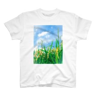 豊作1 T-shirts