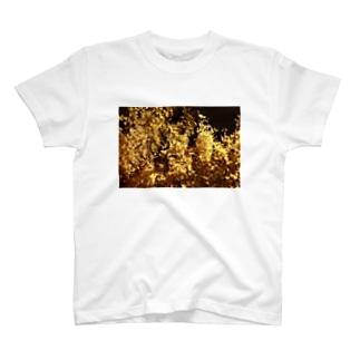 """きらきら世界""""イチョウ"""" T-shirts"""