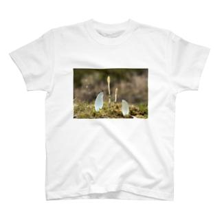 つくしんぼ〜おとも〜 T-shirts