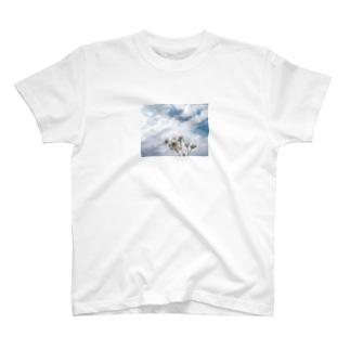空花 Tシャツ T-shirts