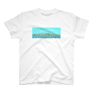 ALPS(アルプス山脈)グッズ T-shirts