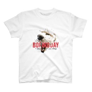 デザイン④Boring Day T-shirts