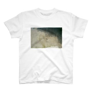 2020/0628/0018 T-shirts