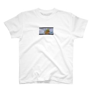 mogetansanのあやちゃん T-shirts