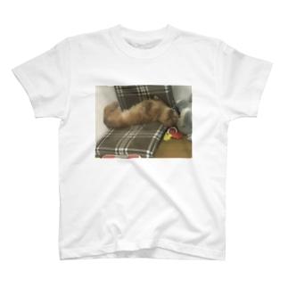 狂気の犬 T-shirts