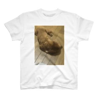何してるかわからない犬 T-shirts