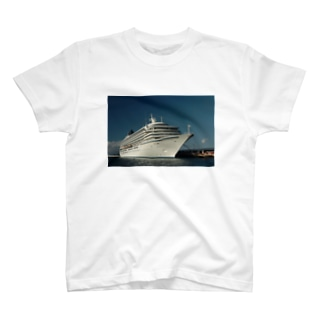 飛鳥 Ⅱ T-shirts