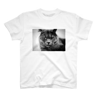 ハードボイルド風LUKE T-Shirt