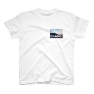 Switzerland T-shirt  T-shirts