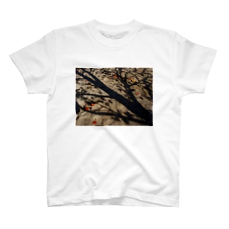 真実を写すもの DATA_P_150 樹木の影 T-shirts