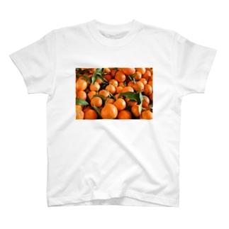 イスラエル 市場のおもいで T-shirts