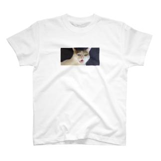 白猫オッドアイ T-shirts
