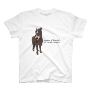 (公財)ハーモニィセンター チャリティグッズ ノイエーゼル T-shirts