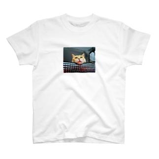のほほんぷちょちゃんは猫。 T-shirts